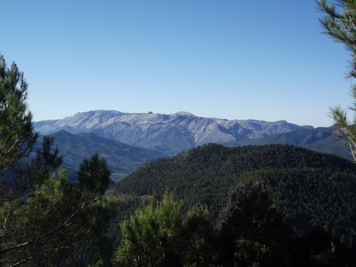 asombroso rubia paseo en Jaén