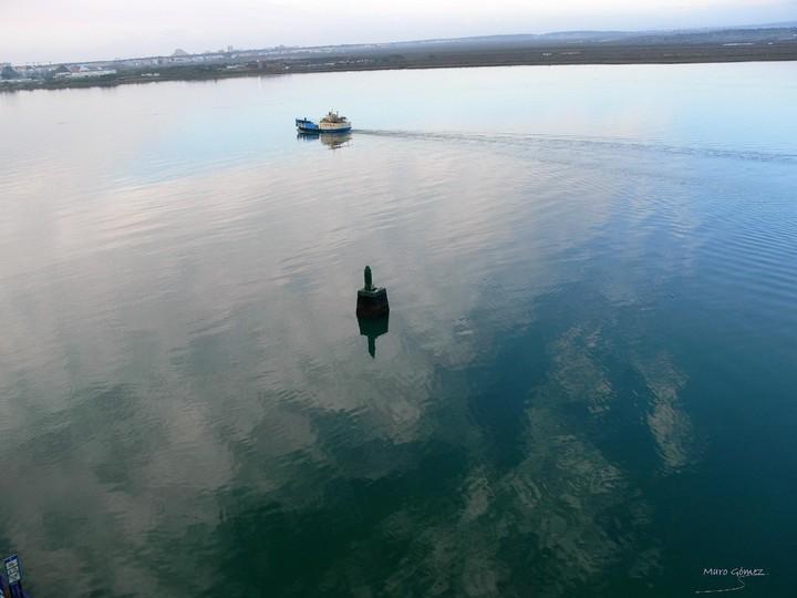 maro gómez