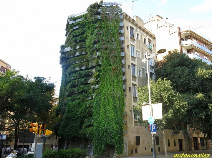 Fotos de jardines verticales en barcelona for Jardines verticales barcelona
